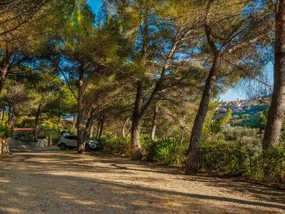 Casa do Caseiro, Location Maison à Vila Flor - Photo 23 / 38