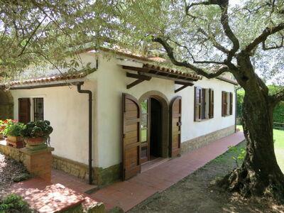 Ulivo, Maison 4 personnes à Montescudaio