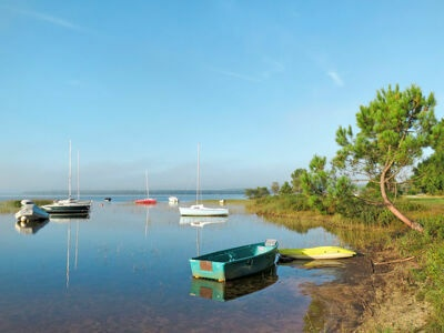 Atlantic Green (LCA350), Location Maison à Lacanau - Photo 21 / 23