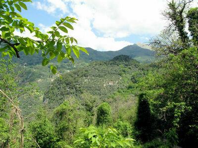 Olivella (CMA220), Location Maison à Camaiore - Photo 26 / 28