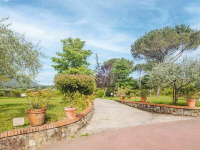 Verde Versilia (CMA225), Location Maison à Camaiore - Photo 35 / 36
