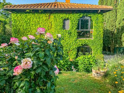 Villa Vittoria, Location Villa à Reggello - Photo 2 / 44