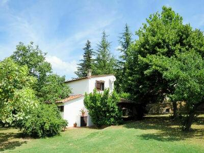 Campitello (BCC135), Maison 4 personnes à Boccheggiano