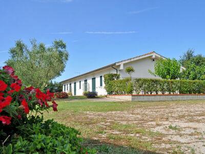 I Gelsi (CST275), Maison 5 personnes à Castiglione della Pescaia
