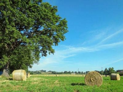 Boriano, Location Gite à Orvieto - Photo 20 / 27