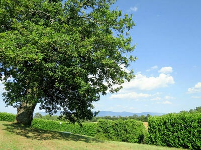 Villa Trinkl, Location Villa à Hopfgarten im Brixental - Photo 22 / 40