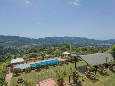 Bettamauro (CMA118), Location Maison à Camaiore - Photo 4 / 44