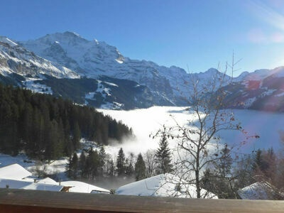 Jungfrau an der Ledi, Chalet 5 personnes à Wengen