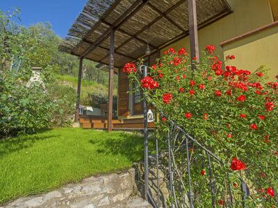 Olivo, Location Maison à Massarosa - Photo 27 / 30