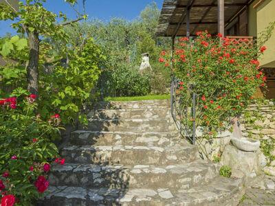 Olivo, Location Maison à Massarosa - Photo 28 / 30