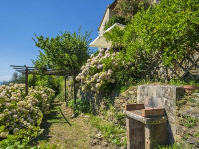 Il Mandarino, Location Maison à Camaiore - Photo 2 / 26