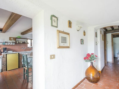 Il Mandarino, Location Maison à Camaiore - Photo 6 / 26