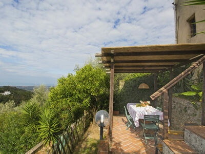 Il Mandarino, Location Maison à Camaiore - Photo 13 / 26
