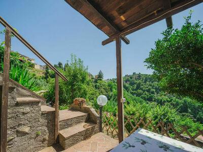 Il Mandarino, Location Maison à Camaiore - Photo 22 / 26