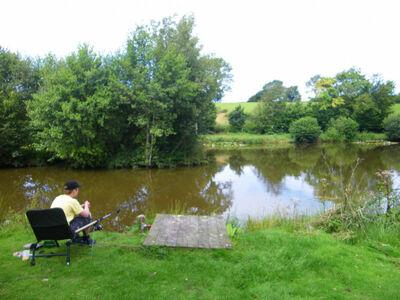Ty Cart, Location Maison à Welshpool - Photo 5 / 17