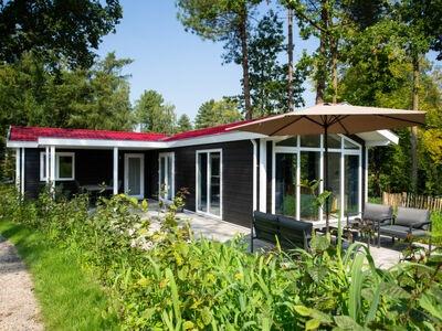 De Thijmse Berg, Maison 6 personnes à Rhenen