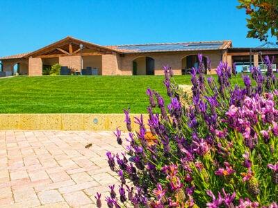 Il Prato, Location Villa à Crespina Lorenzana - Photo 29 / 31