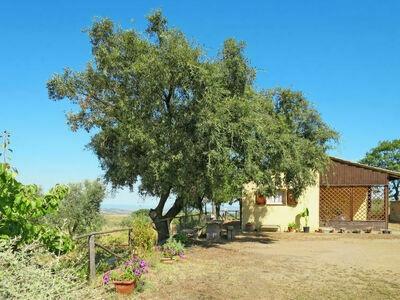 San Giorgio (SSO120), Maison 4 personnes à Scansano