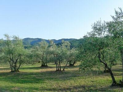 Rose del Chianti, Location Villa à Figline Val d'Arno - Photo 24 / 26