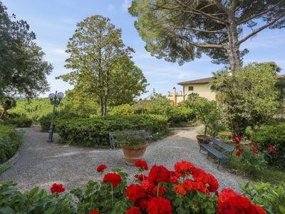 Villa La Guardia Vecchia, Location Gite à Crespina Lorenzana - Photo 7 / 46