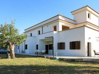 Vigna Grande (PES260)