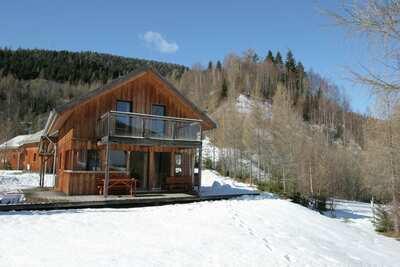 Chalet moderne avec sauna à Stadl an der Mur