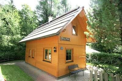 Maison de vacances cosy à Carinthie près du domaine skiable