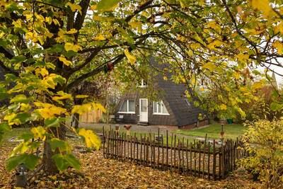 Maison de vacances confortable à Bestwig avec jardin privé