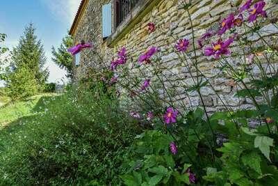 Maison au calme avec piscine, Location Maison à Loubéjac - Photo 23 / 32
