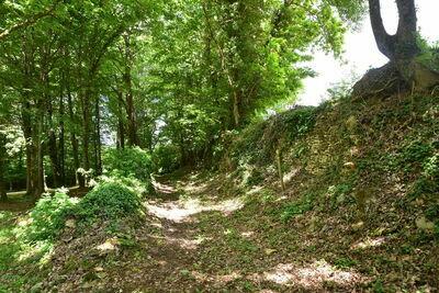 Maison de vacances Besse Micouleaud 10p, Location Maison à Besse - Photo 33 / 40