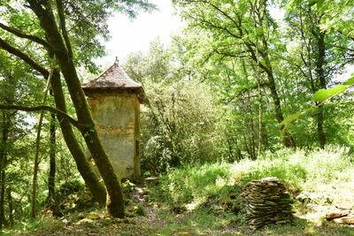 Maison de vacances Besse Micouleaud 10p, Location Maison à Besse - Photo 35 / 40