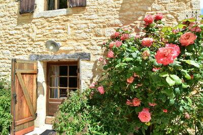 Maison de vacances Besse Micouleaud 10p, Location Maison à Besse - Photo 36 / 40