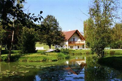 Maison de vacances de charme à Faverolles, piscine et étang