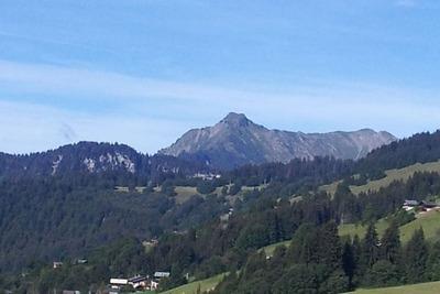 Magnifique chalet sur les pentes de la montagne aux Gets