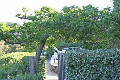 Lotissement le Puits, Location Villa à La Londe Les Maures - Photo 28 / 36