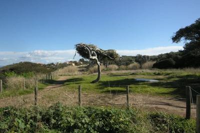 Lotissement le Puits, Location Villa à La Londe Les Maures - Photo 30 / 36