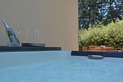 Villa Carpentras, Location Villa à Carpentras - Photo 4 / 33