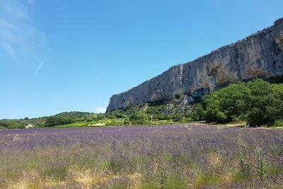 Villa Beau Provence, Location Villa à Malaucène - Photo 34 / 39