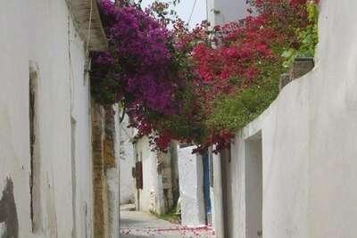 Arxontiko tis Ioannas, Location Villa à Pigi Village - Photo 21 / 30