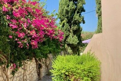 Villa in Loutra, Location Villa à Loutra - Photo 31 / 38