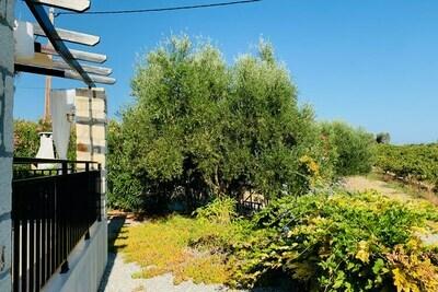 Villa in Loutra, Location Villa à Loutra - Photo 33 / 38