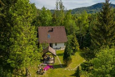 Maison de vacances à Lokve avec terrasse