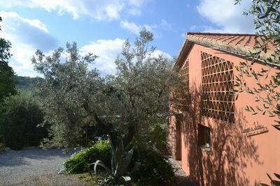 Maison de vacances calme à Castagneto Carducci avec jardin