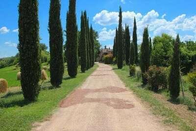 Villa Fiorella Cinque, Location Villa à San Venanzo - Photo 24 / 28