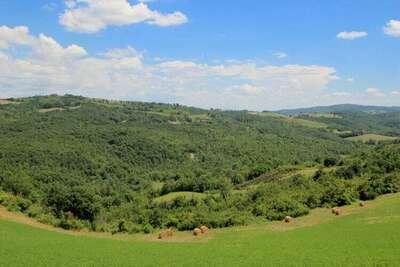 Villa Fiorella Cinque, Location Villa à San Venanzo - Photo 25 / 28