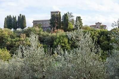 Trebbiano, Location Maison à Figline E Incisa Valdarno - Photo 26 / 34