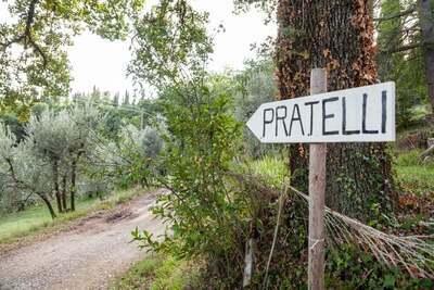 Trebbiano, Location Maison à Figline E Incisa Valdarno - Photo 28 / 34