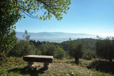 Sangiovese, Location Maison à Figline E Incisa Valdarno - Photo 20 / 29