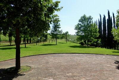 La Selvicciola, Location Villa à Terricciola - Photo 21 / 23