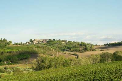 Villa San Luigi, Location Villa à Terricciola - Photo 31 / 36